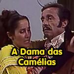 camelias-mini